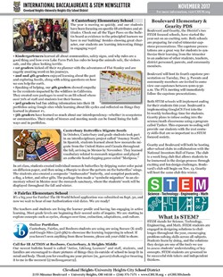 IB/STEM Newsletter - November 2017