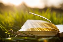 Book in grass with sunlight