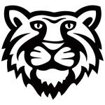 Tiger Only Black EPS