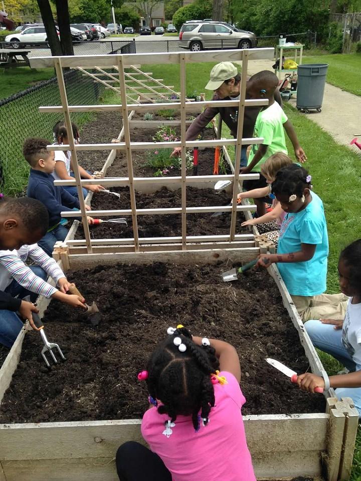 Kindergarten's Pollinator Garden